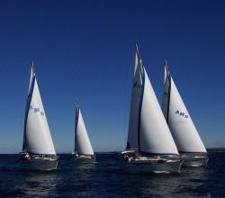 Barche a vela in regata. CNVA. Circolo Nautico e della Vela dell'Argentario