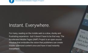 AMP web site