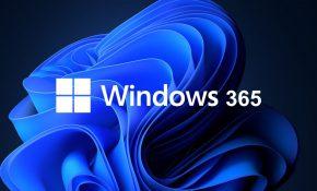 img-Windows-365.jpg